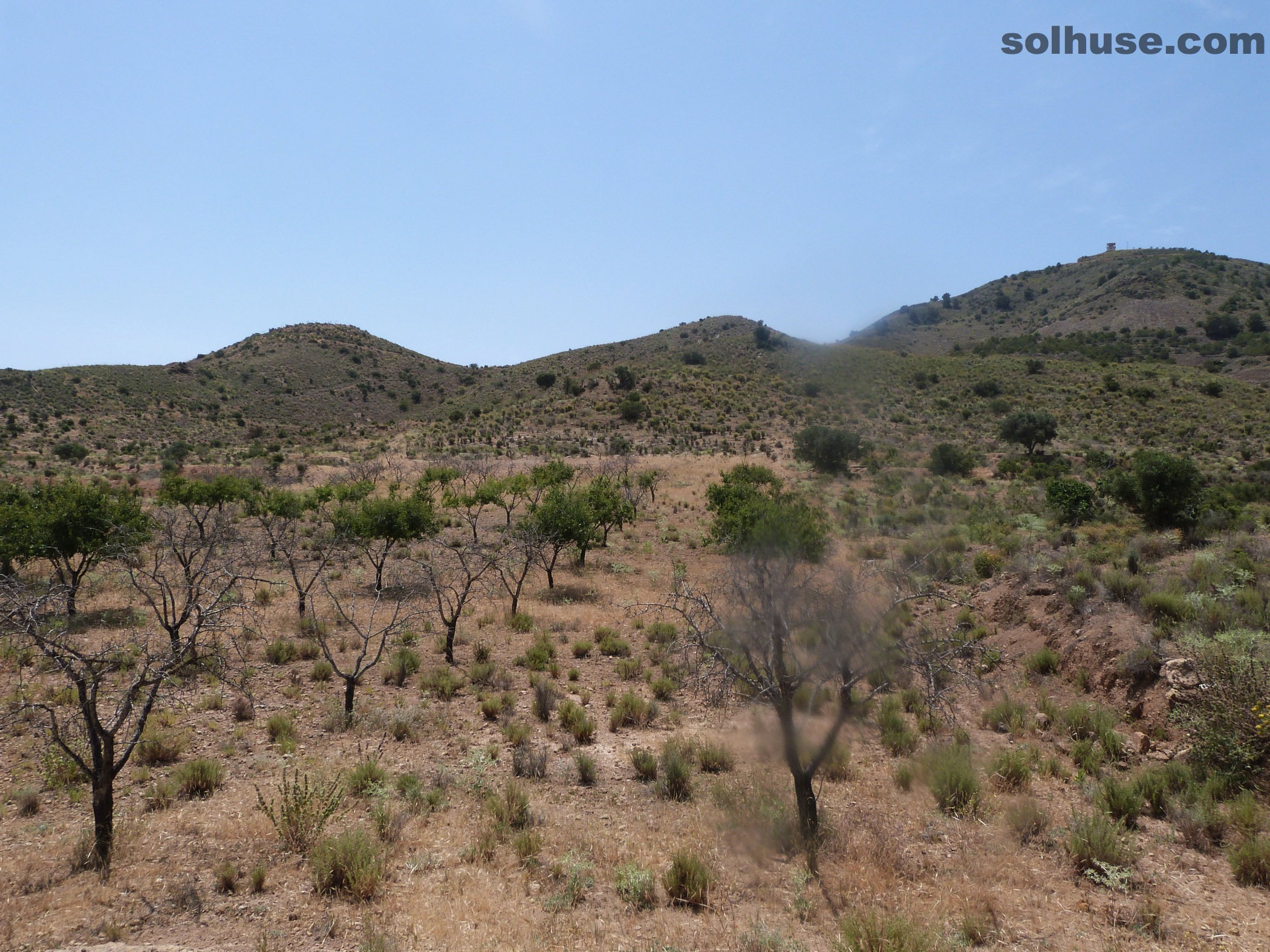 SEVEN LARGE PLOTS, VARIOUS SIZES AND PRICES IN LEIVA VALLEY