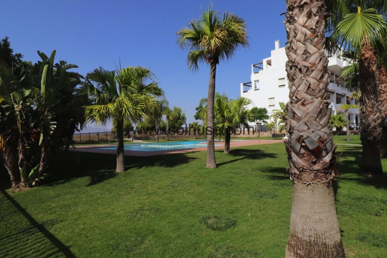 NEW LISTING - 2 BED APARTMENT ON CONDADO DE ALHAMA